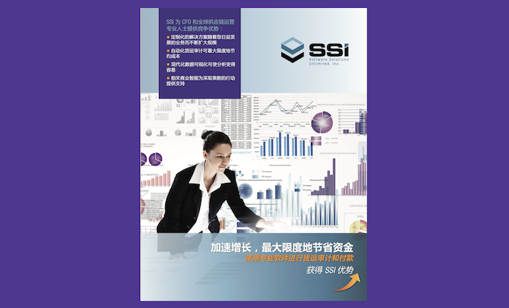 ssi-freight-audit-Chinese-language-brochure